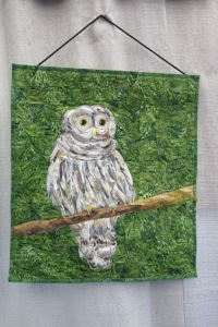 """Whoot by Isabelle Jenkins - 2016 Challenge entry, inspired by """"I Heard the Owl Call My Name"""" by Margaret Craven"""
