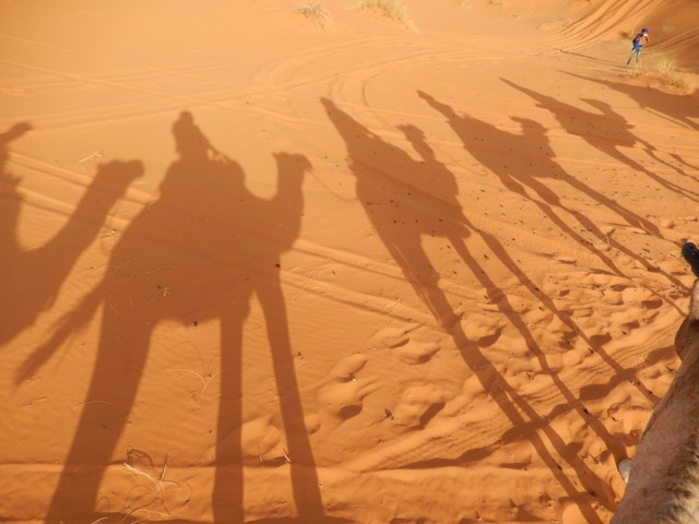 morocco-bev-d-camel-ride-image004