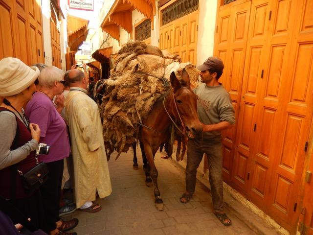 morocco-bev-d-fez-medina-image003