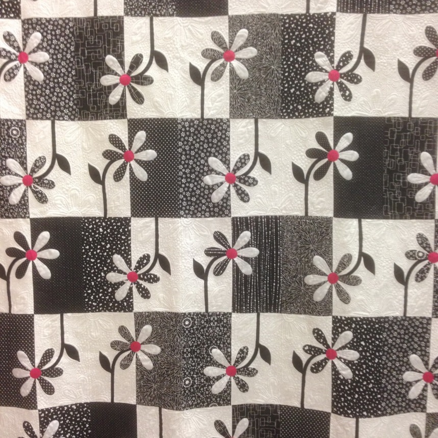 Langley Quilters' Guild Show 2018