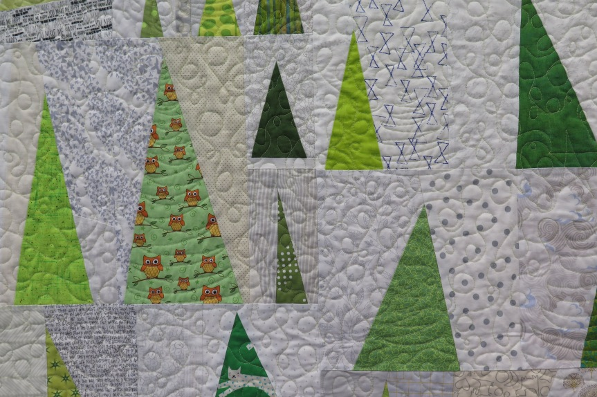 Quilts Bloom at the Lions Gate Quilters' GuildShow
